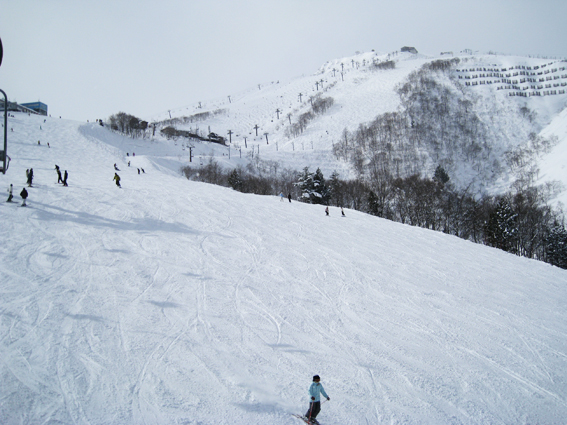 hakuba happo one